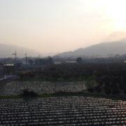 農場に日が落ちて