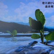 耕作放棄地への取り組みがテレビで紹介されました。